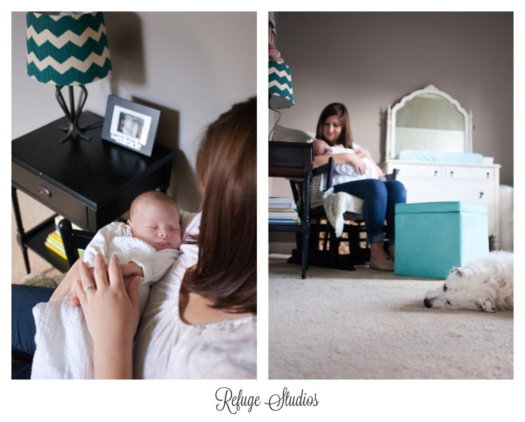 Findlay Ohio Newborn